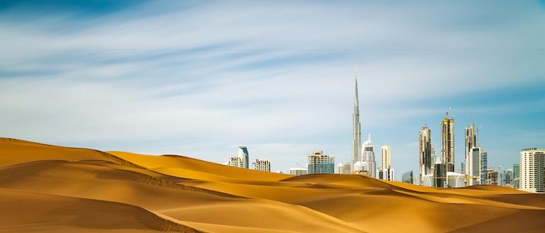 The gulf: a unique market with unique demands